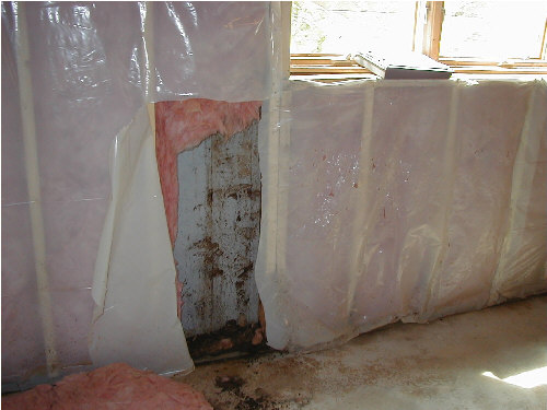 Should I Insulate Basement Walls : Mold in your home